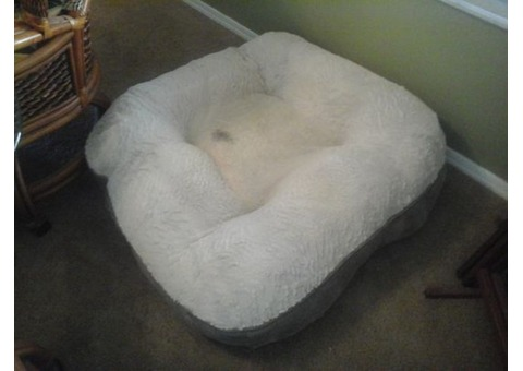 Dog Bed - 3ft x 3ft